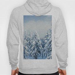 Winter Landscape Hoody