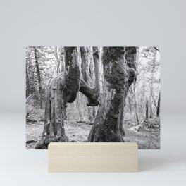 The Beauty of Singularity Mini Art Print