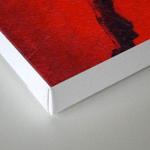 Cherry Darling Canvas Print