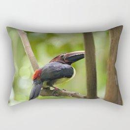 Sam Rectangular Pillow