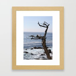 Life and Death Framed Art Print