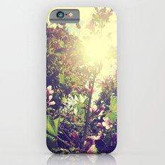 The Climb iPhone 6s Slim Case