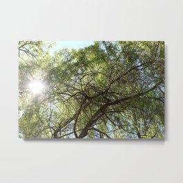 Grünes Paradies im Sommer Metal Print