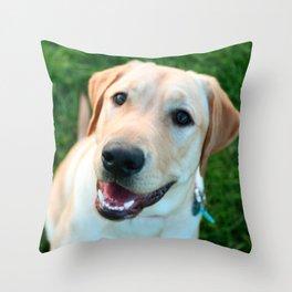 Obi Throw Pillow