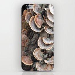 Fungi III iPhone Skin