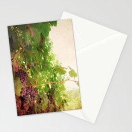 Vineyard Vines II Stationery Cards