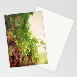 Vineyard Vines II Stationery Cards