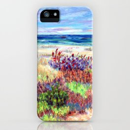 Winter Dunes, Barnegat Light, Long Beach Island, New Jersey iPhone Case