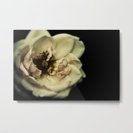 The Great Flower Consortium - Member No. 136A Metal Print