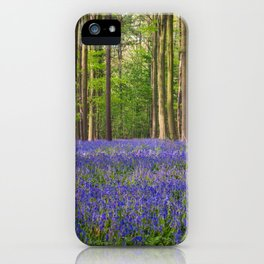 Hallerbos 3 iPhone Case