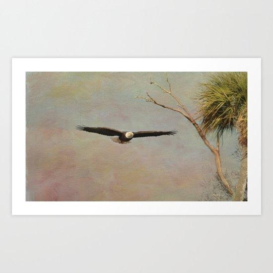 Eagle Soft Glide Art Print