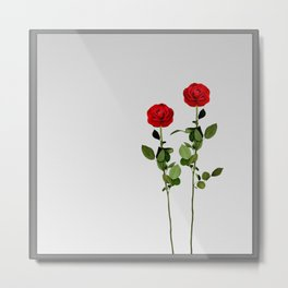 Red Roses | Mirror Art Design Metal Print