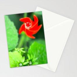 Hot Spiral  Stationery Cards