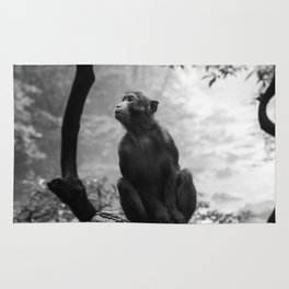 Monkey n Jhanjiajie Rug