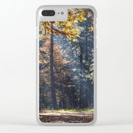 Colorful autumn Clear iPhone Case