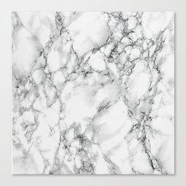 white marble IV Canvas Print