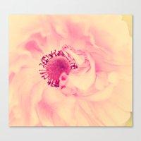 aelwen Canvas Prints featuring Pink Poppy by Aelwen