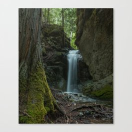 Mother Natures Beauty Canvas Print