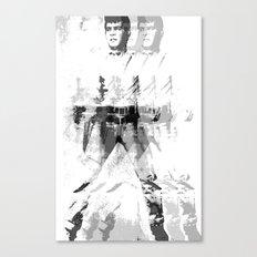 FPJ gray mix Canvas Print