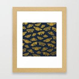 Golden Moths in Navy Framed Art Print
