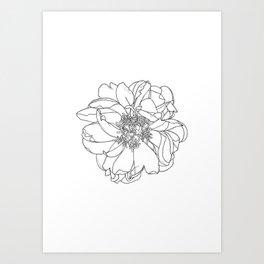 Single flower botanical illustration - Orla Art Print