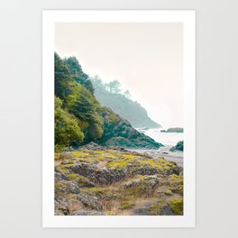 Misty Northwest Coastline Pacific Ocean Beach Nautical Decor PNW Art Beards Hollow Art Print