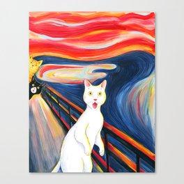 Cat surprise Canvas Print
