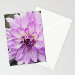 Longwood Gardens Autumn Series 115 Stationery Cards