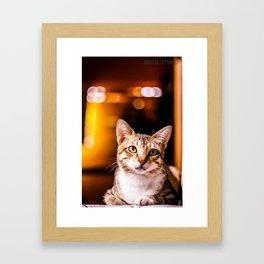 Nekorama Framed Art Print