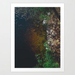 Summer Lake - Aerial Photography Art Print