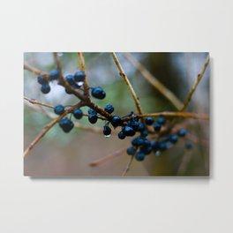 Berries After The Rain Metal Print