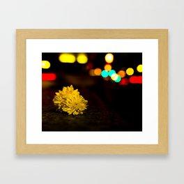 Night Flower Framed Art Print