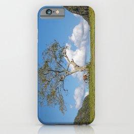 Single tree in Vinales Valley, Cuba iPhone Case