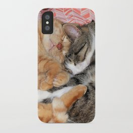 Nap Buddies iPhone Case
