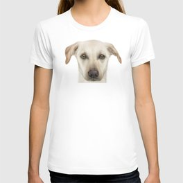 Rescue Dog, Lab mix, Maple T-shirt