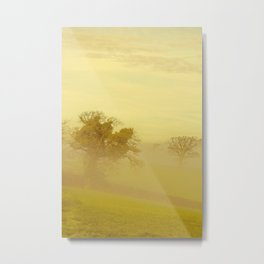 Fog 22 Metal Print