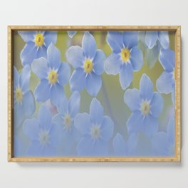 Forget-me-not flowers - summer beauty #society6 #buyart Serving Tray