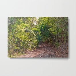 The curve in the rail Metal Print