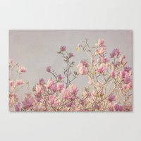 magnolia Canvas Prints featuring Magnolia  by Pure Nature Photos