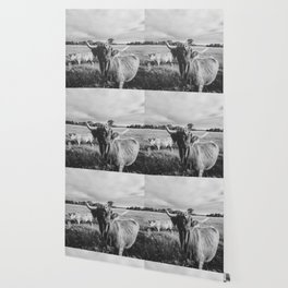 Black and White Highland Cow - Moo Wallpaper