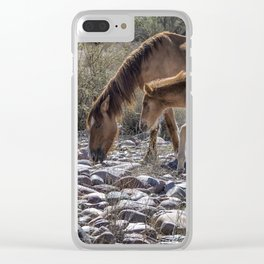 Salt River Mare and Her Colt, No. 2 Clear iPhone Case