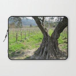 Olive tree in vineyard Laptop Sleeve
