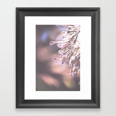 Dappled in Pink Framed Art Print