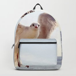 Winging It Backpack