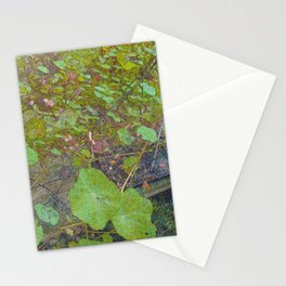 Nasturtiums in March Stationery Cards