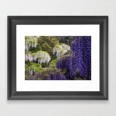 Fragrant Framed Art Print