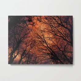 The Enchanted Forest 2 Metal Print