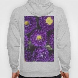 Bright Purple and Yellow Mum Flowers Hoody