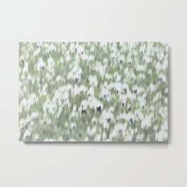 Pansy Field Floral Pattern II Metal Print