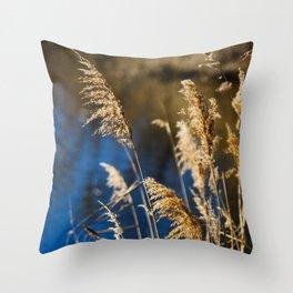 Reeds in Camargue Throw Pillow